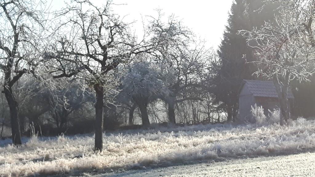 Novemberweg – die erste Strophe