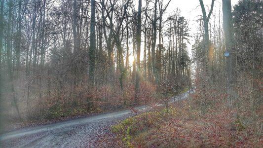 Novemberweg – die dritte Strophe ist fertig